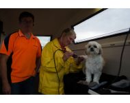 dog-grooming-service 055