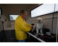 dog-grooming-service 066